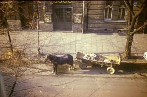 Ul. Sebastiana - widok z dachu, jesień, 1984